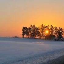 【冬の洞爺湖】弱々しく暮れる夕陽に照らされる雪原。
