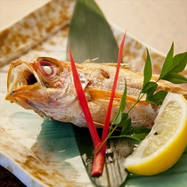 高級魚「のど黒」