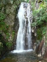 元気村楊梅の滝