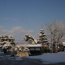 2月下旬 玄関前 朝の雪景色です。