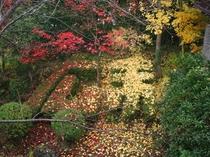 落ち葉で末広の文字