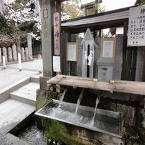 湧水(阿蘇神社境内)