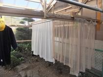 女性用洗濯物干場