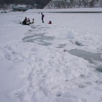 流氷~プール~