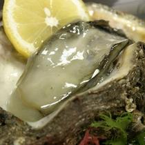 *【生岩がき】期間限定の旬の味覚!別注料理でお楽しみ下さいませ。