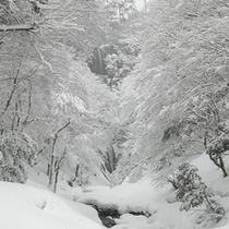 猿尾滝(冬)