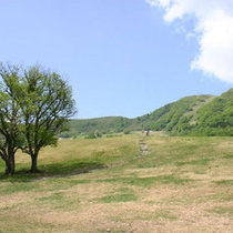 初夏の鉢伏高原♪