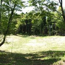 自然体験の森