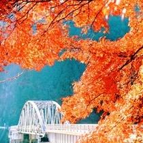 周辺_紅葉と旧東雲橋