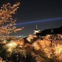 清水の夜景♪
