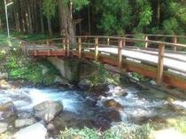 裏の渓流の上にかかった橋。夏も涼し気です。