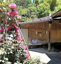 露天風呂風景(初夏)