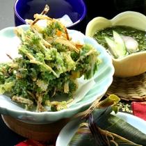 【夕食】四季の天ぷら。ご飯にもお酒にもよく合います!