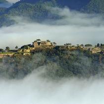 運が良ければ早朝の雲海に見え隠れする「竹田城跡」をカメラに収めることも可能です♪