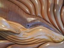 【ISANA】とは【クジラ】や【イルカ】を表す古語です♪