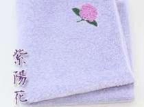 自然染め 紫陽花