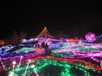 まんのう公園冬のイルミネーション