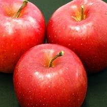 *【りんご】生産量日本一!青森にきたからには甘くておいしい実をぜひご賞味あれ!