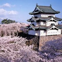 *【弘前城(春)】桜の名所として人気!例年GW頃は「弘前さくらまつり」が開催され賑わいます。