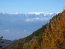 (秋)雪化粧と紅葉