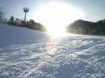 13. 真っ白な雪で思い思いのシュプールを