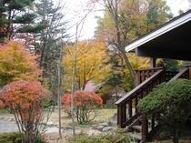 秋には【スウィート】のデッキテラス前で紅葉狩り♪