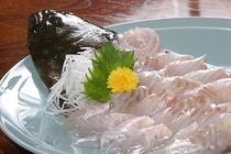 目の前の海で捕れた活魚