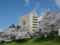 ホテル外観桜