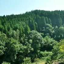 小国の雄大な自然をお楽しみいただけます