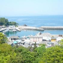 *【周辺】真鶴港