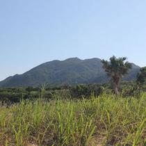 民宿近くから見る於茂登の山々