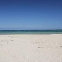 吉原の海 真っ白な砂浜
