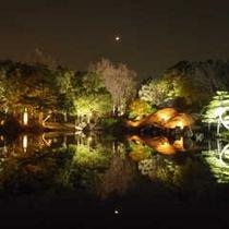 養浩館庭園2