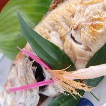 【夕食一例】幻の高級魚「のどぐろ」