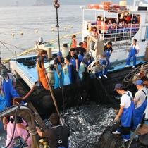 四季折々に変化する若狭の海は魚貝類の宝庫!