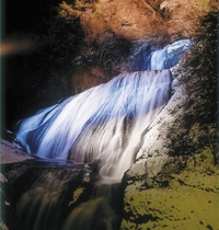 袋田の滝(ライトアップ)