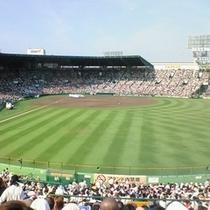 【阪神甲子園球場】ホテルから約30分