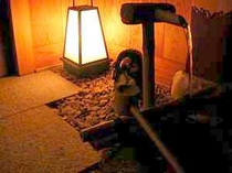 玄関をはいると懐古の空間に浸ってみませんか・・・・・。