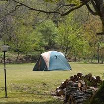 【裏庭の芝生】キャンプなどアウトドアも楽しめます♪