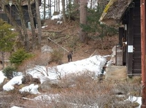 食堂前の雪(平成26年3月23日撮影)
