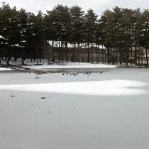 *冬の大芝高原/高原は辺り一面雪景色に包まれます☆お子様と雪遊びしませんか?