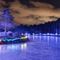 *冬のイルミネーション/イルミネーションされた夜の大芝湖は幻想的な雰囲気☆