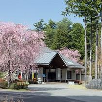 *大芝荘春の外観/美しい桜の景色に包まれる春。桜の他に様々なお花を楽しめる季節。