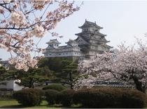 姫路城(春)