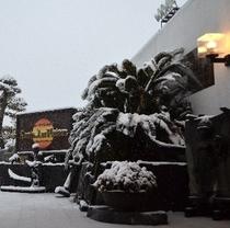 冬の松阪サンテホテル外観。珍しく雪がふったので写真に撮りました。(*^^)v楽天500
