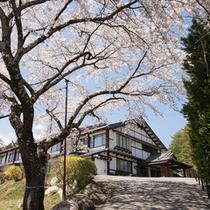 *春の羽広荘