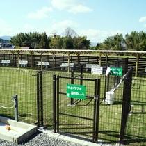 【ドッグラン】コテージ目の前の広い天然芝!ワンちゃん・お子様が楽しく走り回れる環境