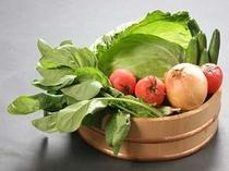自然の中でのびのび育ったお野菜達