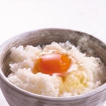 *朝食・卵かけ御飯(イメージ)