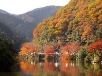 観光 鎌北
